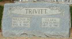 TRIVITT, WILLIAM - Dunklin County, Missouri | WILLIAM TRIVITT - Missouri Gravestone Photos