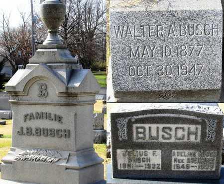 BUSCH, JULIUS FREDERICK - Franklin County, Missouri | JULIUS FREDERICK BUSCH - Missouri Gravestone Photos