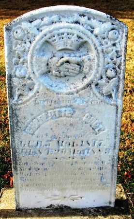 GODT, CHARLOTTE - Franklin County, Missouri | CHARLOTTE GODT - Missouri Gravestone Photos