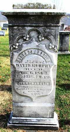 MURPHY, JOHN FRANKLIN - Franklin County, Missouri | JOHN FRANKLIN MURPHY - Missouri Gravestone Photos