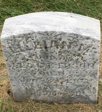 EDSON, LILLIAN MILDRED - Gentry County, Missouri   LILLIAN MILDRED EDSON - Missouri Gravestone Photos