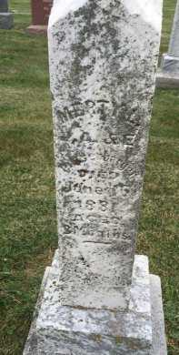 PITTSENBARGER, MERTYL - Gentry County, Missouri   MERTYL PITTSENBARGER - Missouri Gravestone Photos