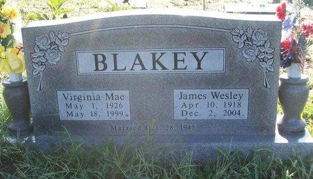"BLAKEY, JAMES WESLEY ""WES"" (VETERAN WWII) - Greene County, Missouri | JAMES WESLEY ""WES"" (VETERAN WWII) BLAKEY - Missouri Gravestone Photos"