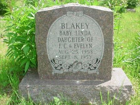 BLAKEY, LINDA - Greene County, Missouri | LINDA BLAKEY - Missouri Gravestone Photos