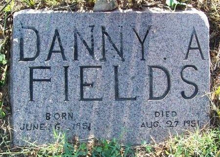 FIELDS, DANNY ALLEN - Greene County, Missouri | DANNY ALLEN FIELDS - Missouri Gravestone Photos