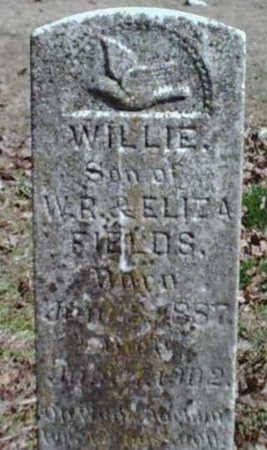 FIELDS, WILLIE - Greene County, Missouri | WILLIE FIELDS - Missouri Gravestone Photos