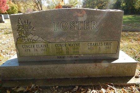 FOSTER, CONOR WAYNE - Greene County, Missouri   CONOR WAYNE FOSTER - Missouri Gravestone Photos