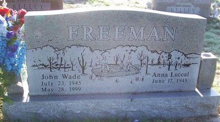 FREEMAN, JOHN WADE - Greene County, Missouri | JOHN WADE FREEMAN - Missouri Gravestone Photos