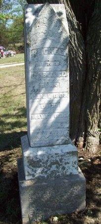 HEADLEE, RACHEL - Greene County, Missouri   RACHEL HEADLEE - Missouri Gravestone Photos