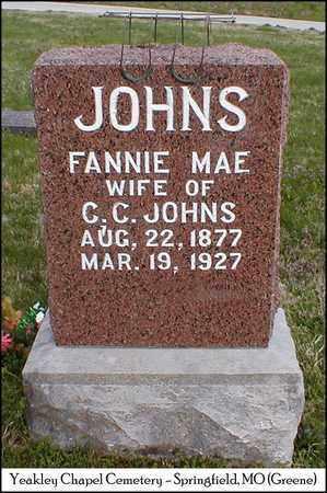 JOHNS, FANNIE MAE - Greene County, Missouri | FANNIE MAE JOHNS - Missouri Gravestone Photos