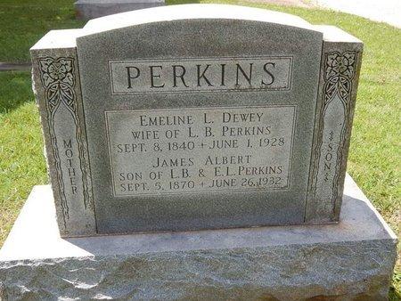 PERKINS, JAMES ALBERT - Greene County, Missouri | JAMES ALBERT PERKINS - Missouri Gravestone Photos