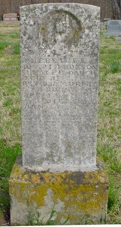 SPENCER, PHOEBE ELLEN - Greene County, Missouri | PHOEBE ELLEN SPENCER - Missouri Gravestone Photos