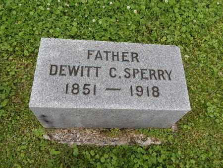 SPERRY, DEWITT C - Greene County, Missouri | DEWITT C SPERRY - Missouri Gravestone Photos