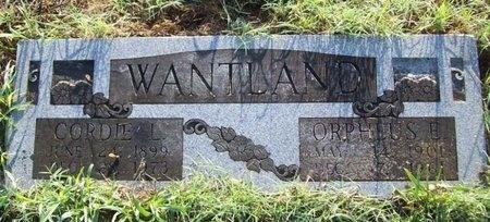 "WANTLAND, CORDELIA LILLIAN ""CORDIE"" - Greene County, Missouri | CORDELIA LILLIAN ""CORDIE"" WANTLAND - Missouri Gravestone Photos"