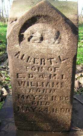 WILLIAMS, ALBERT L - Greene County, Missouri | ALBERT L WILLIAMS - Missouri Gravestone Photos