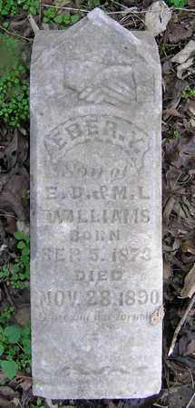 WILLIAMS, EBER Y - Greene County, Missouri | EBER Y WILLIAMS - Missouri Gravestone Photos