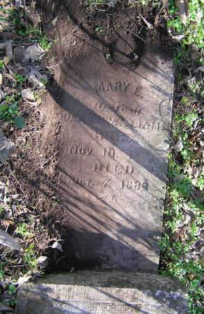 WILLIAMS, MARY EVELINE - Greene County, Missouri | MARY EVELINE WILLIAMS - Missouri Gravestone Photos
