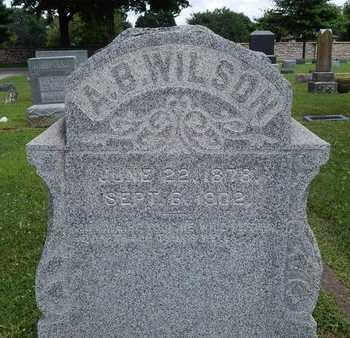 WILSON, A B - Greene County, Missouri | A B WILSON - Missouri Gravestone Photos