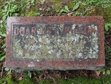 WILSON, CHARLES H - Greene County, Missouri | CHARLES H WILSON - Missouri Gravestone Photos