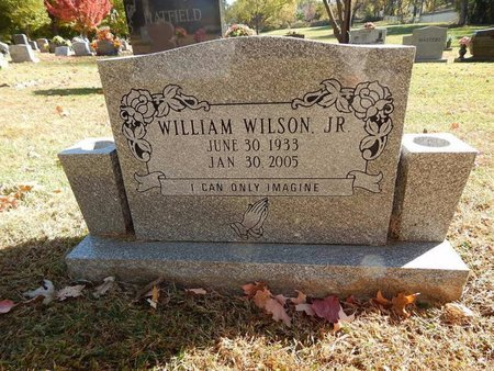 WILSON, WILLIAM JR - Greene County, Missouri | WILLIAM JR WILSON - Missouri Gravestone Photos