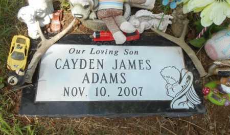 ADAMS, CAYDEN JAMES - Howell County, Missouri | CAYDEN JAMES ADAMS - Missouri Gravestone Photos