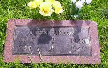 ADAMS, JOYCE - Howell County, Missouri | JOYCE ADAMS - Missouri Gravestone Photos