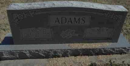 ADAMS, NANCY - Howell County, Missouri | NANCY ADAMS - Missouri Gravestone Photos
