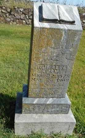 ADAMS, ROSALEE - Howell County, Missouri | ROSALEE ADAMS - Missouri Gravestone Photos