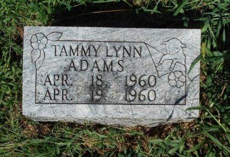 ADAMS, TAMMY LYNN - Howell County, Missouri | TAMMY LYNN ADAMS - Missouri Gravestone Photos