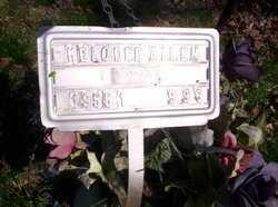 ALLEN, MELODEE JEAN - Howell County, Missouri | MELODEE JEAN ALLEN - Missouri Gravestone Photos