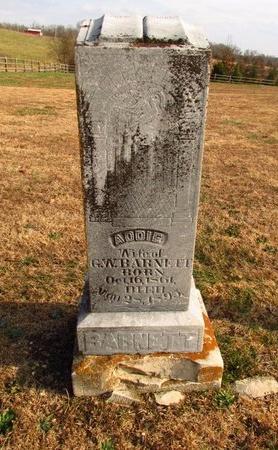 BARNETT, ADDIE - Howell County, Missouri   ADDIE BARNETT - Missouri Gravestone Photos