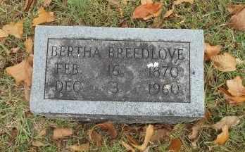 BREEDLOVE, BERTHA - Howell County, Missouri | BERTHA BREEDLOVE - Missouri Gravestone Photos