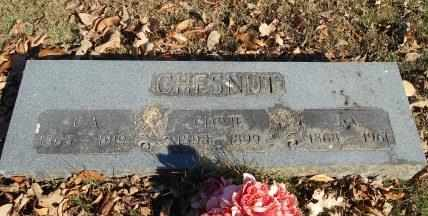 CHESNUT, SARAH ADELIA - Howell County, Missouri | SARAH ADELIA CHESNUT - Missouri Gravestone Photos