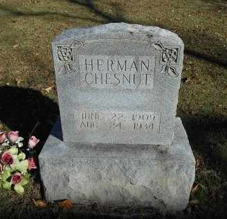 CHESNUT, HERMAN - Howell County, Missouri | HERMAN CHESNUT - Missouri Gravestone Photos