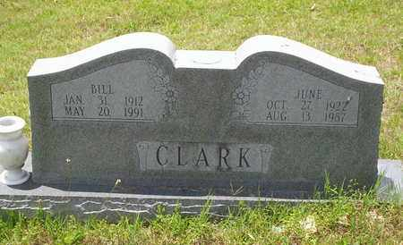 CLARK, BILL - Howell County, Missouri | BILL CLARK - Missouri Gravestone Photos