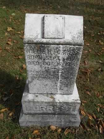 FORREST, WILLIE - Howell County, Missouri | WILLIE FORREST - Missouri Gravestone Photos