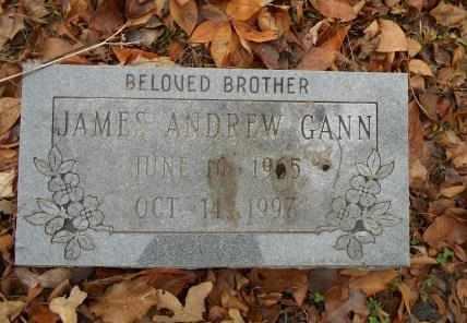 GANN, JAMES ANDREW - Howell County, Missouri | JAMES ANDREW GANN - Missouri Gravestone Photos