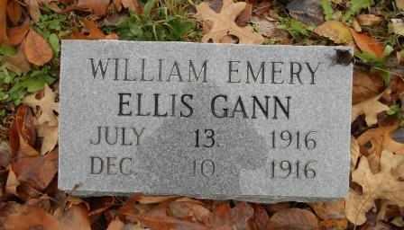 GANN, WILLIAM EMERY - Howell County, Missouri | WILLIAM EMERY GANN - Missouri Gravestone Photos