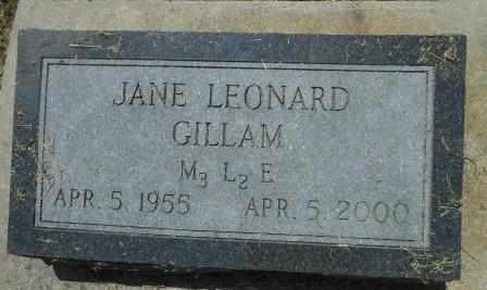 GILLAM, JANE - Howell County, Missouri   JANE GILLAM - Missouri Gravestone Photos
