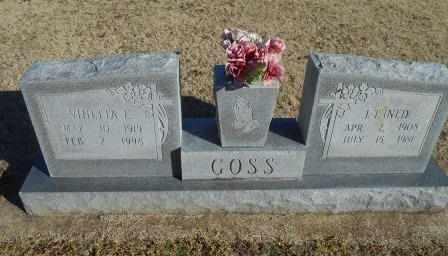 GOSS, VINETTA E. - Howell County, Missouri | VINETTA E. GOSS - Missouri Gravestone Photos