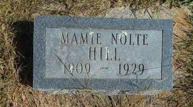 HILL, MAMIE - Howell County, Missouri | MAMIE HILL - Missouri Gravestone Photos
