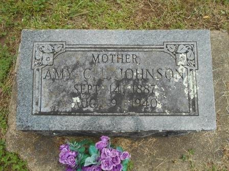 JOHNSON, AMY C L - Howell County, Missouri | AMY C L JOHNSON - Missouri Gravestone Photos