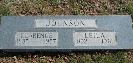JOHNSON, EVA LEILA - Howell County, Missouri | EVA LEILA JOHNSON - Missouri Gravestone Photos