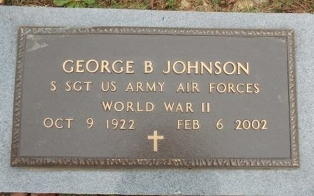 JOHNSON, GEORGE B. VETERAN WWII - Howell County, Missouri | GEORGE B. VETERAN WWII JOHNSON - Missouri Gravestone Photos