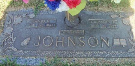 JOHNSON, CAROLYN SUE - Howell County, Missouri | CAROLYN SUE JOHNSON - Missouri Gravestone Photos
