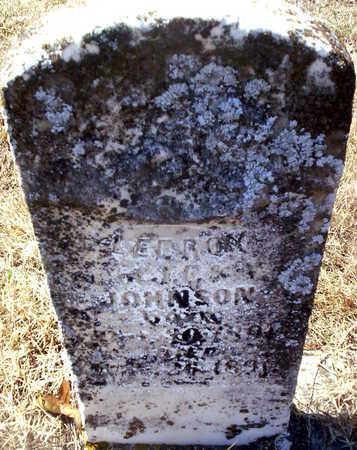 JOHNSON, LEEROY - Howell County, Missouri | LEEROY JOHNSON - Missouri Gravestone Photos