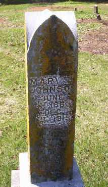 JOHNSON, MARY JANE - Howell County, Missouri | MARY JANE JOHNSON - Missouri Gravestone Photos