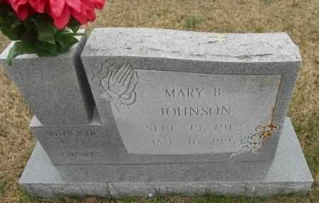 JOHNSON, MARY B. - Howell County, Missouri | MARY B. JOHNSON - Missouri Gravestone Photos