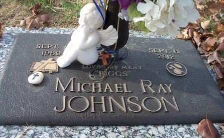 "JOHNSON, MICHAEL RAY ""BIGGS"" - Howell County, Missouri   MICHAEL RAY ""BIGGS"" JOHNSON - Missouri Gravestone Photos"