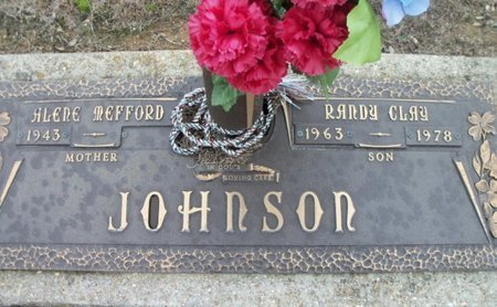 JOHNSON, RANDY CLAY - Howell County, Missouri | RANDY CLAY JOHNSON - Missouri Gravestone Photos